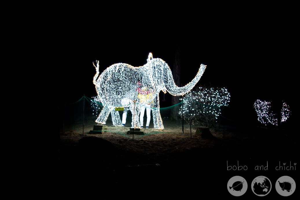 Lighting Festival Seoul Cheongpyong Garden of Morning Calm Elephant