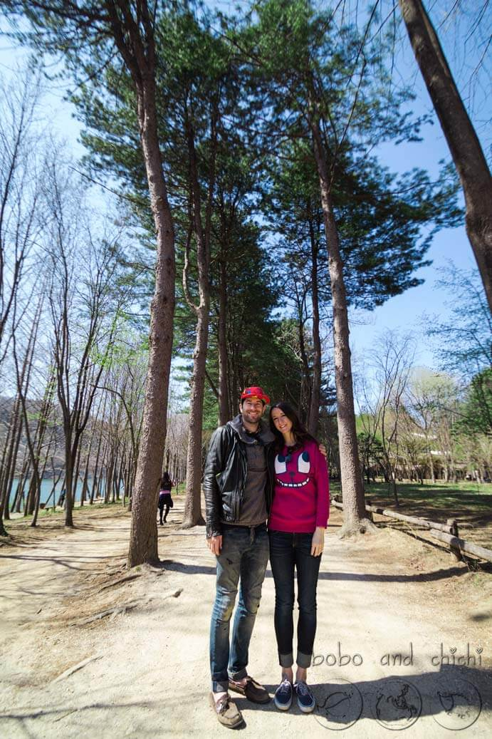 Nami Island cherry blossoms