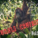 Our Top Trip in 2016 Was This Borneo Jungle Cruise - Day 1 of 3 [Video]