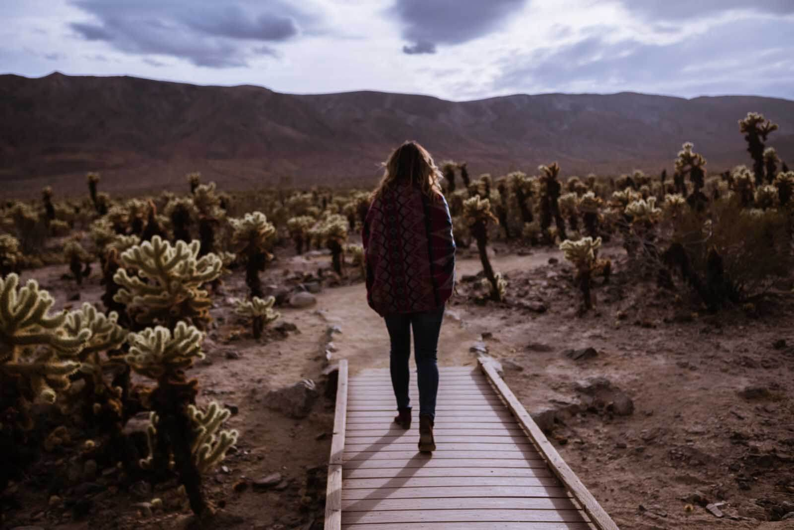 Megan walking through Cholla Cactus Garden in Joshua Tree National Park