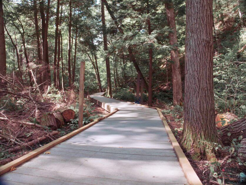 Delaware_Water_Gap_Boardwalk