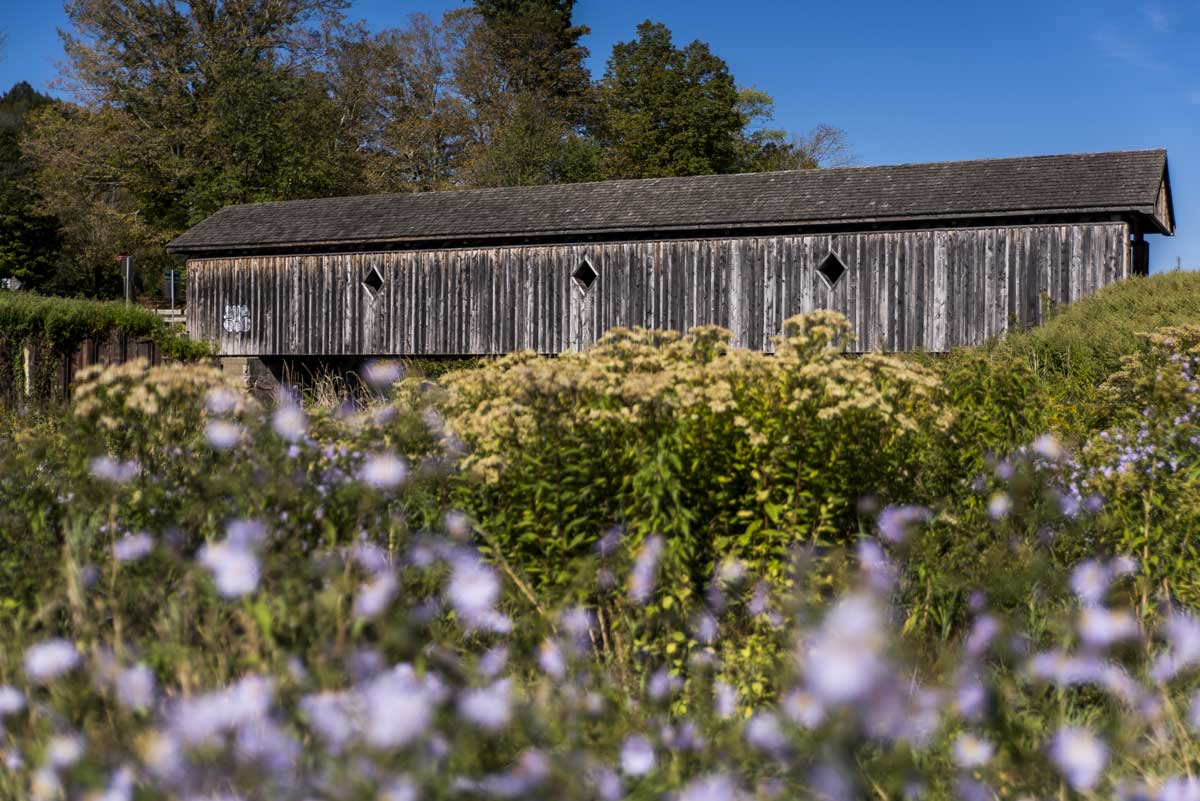 Fitches-Covered-Bridge-in-the-Catskills-region-of-New-York-State