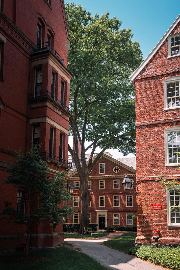 Harvard University Campus in Cambridge Massachusetts Boston itinerary