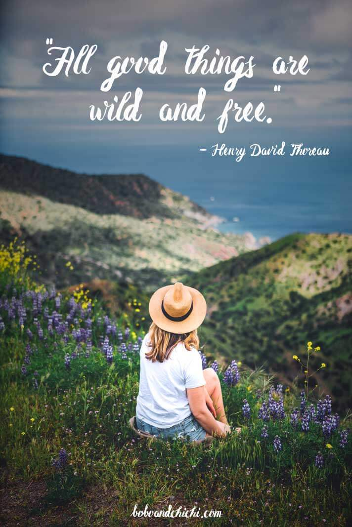 Henry-David-Thoreau-travel-quotes