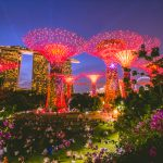 Top 10 Experiences for the newbie traveler in Singapore