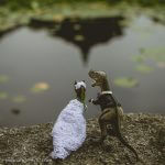 Wedding Dinosaur Series – Seoul Edition [13 Photos]