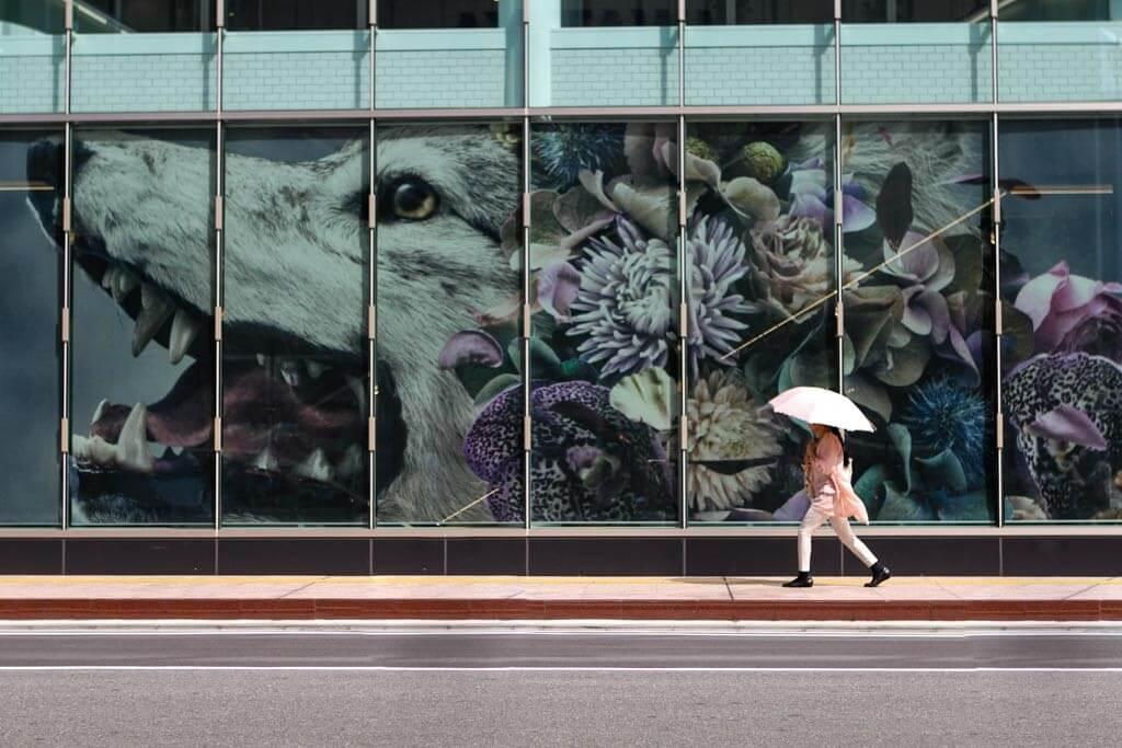 Tenjin | Things to Do in Fukuoka