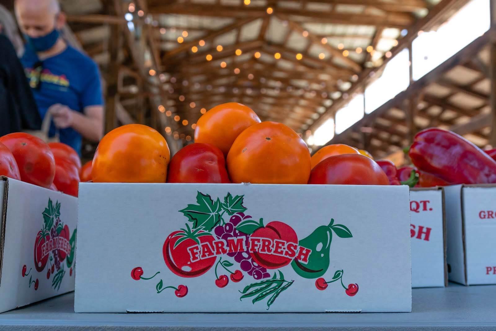 Ithaca Farmers Market in Ithaca NY