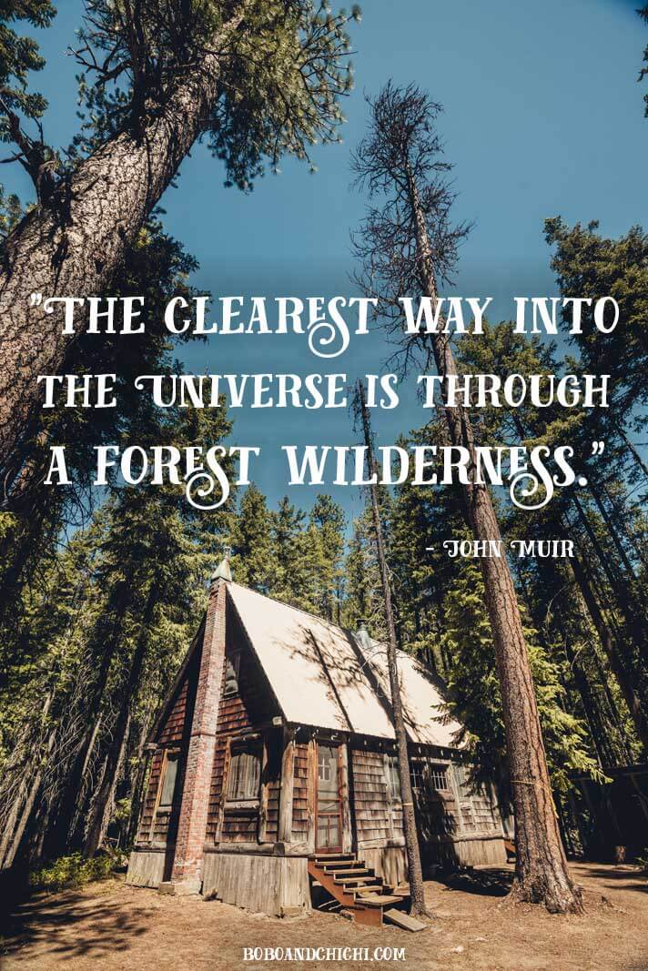 John-Muir-Travel-Quotes