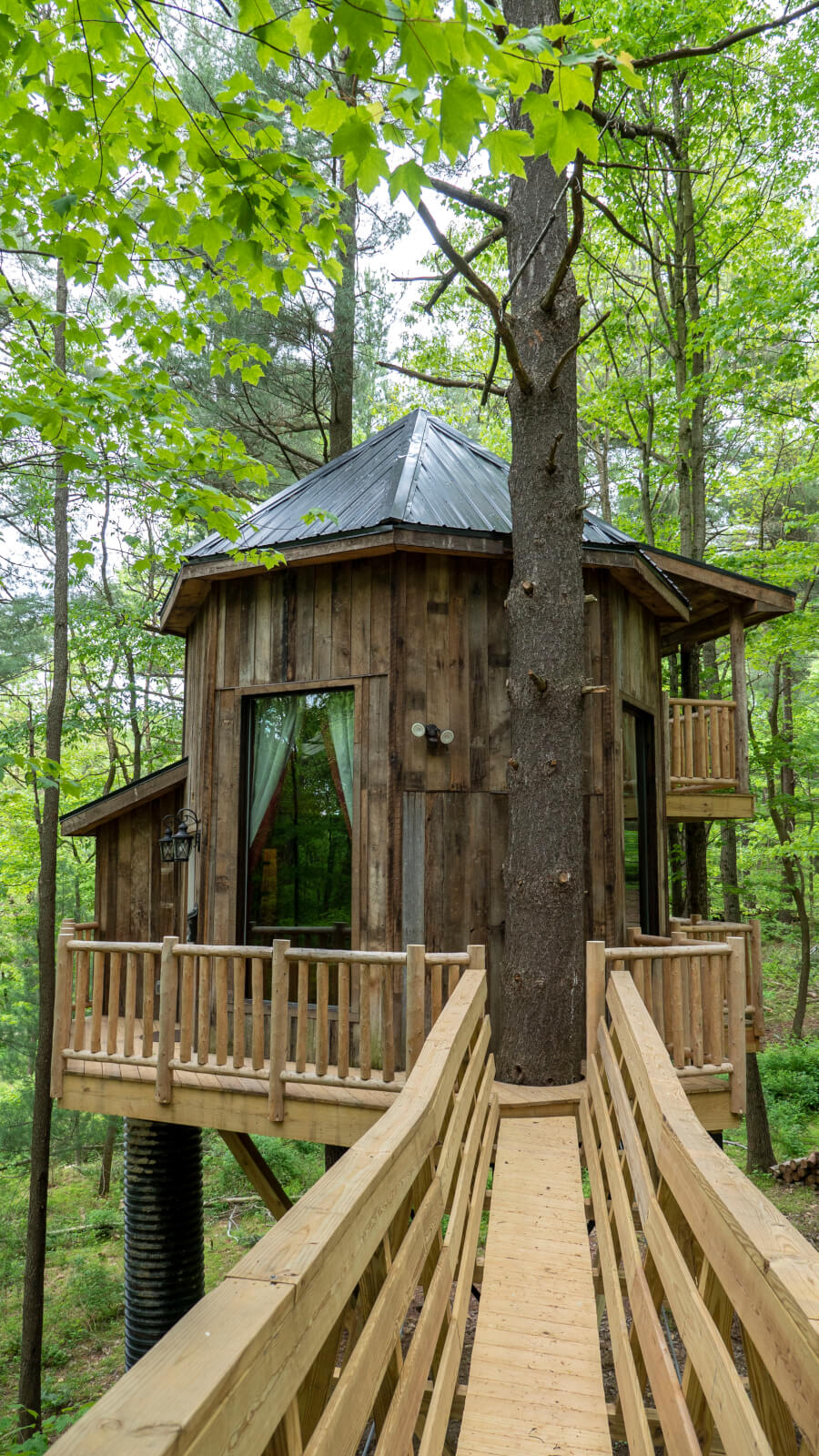 Treehouse cabins in the Mohicans in Ohio