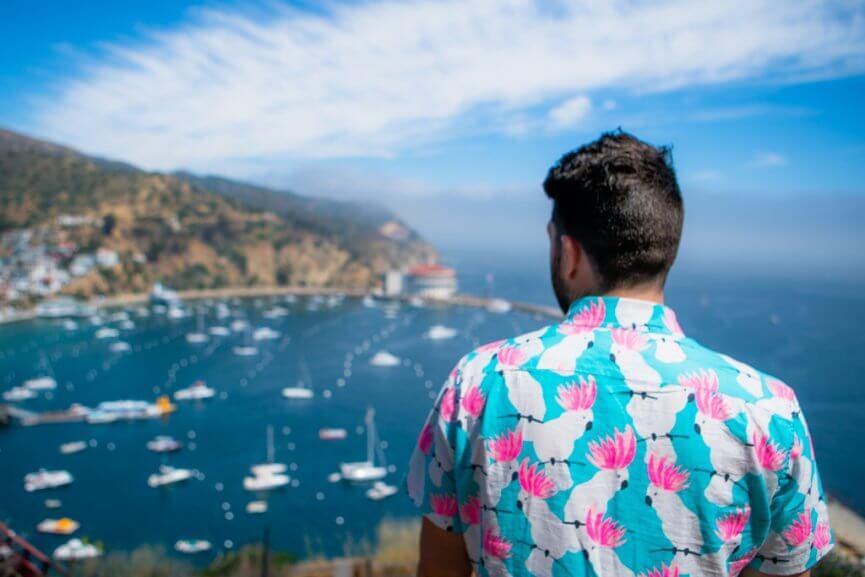 View of Avalon Harbor at Catalina Island from Wrigley House Catalina