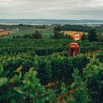 All the Wonderful Things to do in Annapolis Valley, Nova Scotia