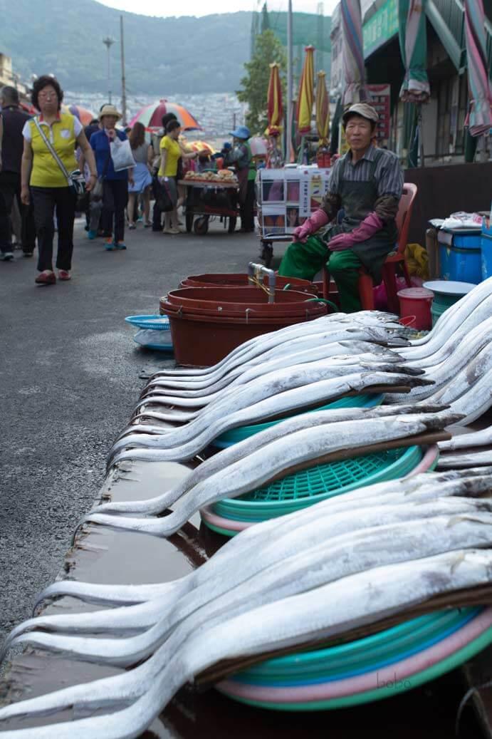 Busan Jalgachi Fish Market