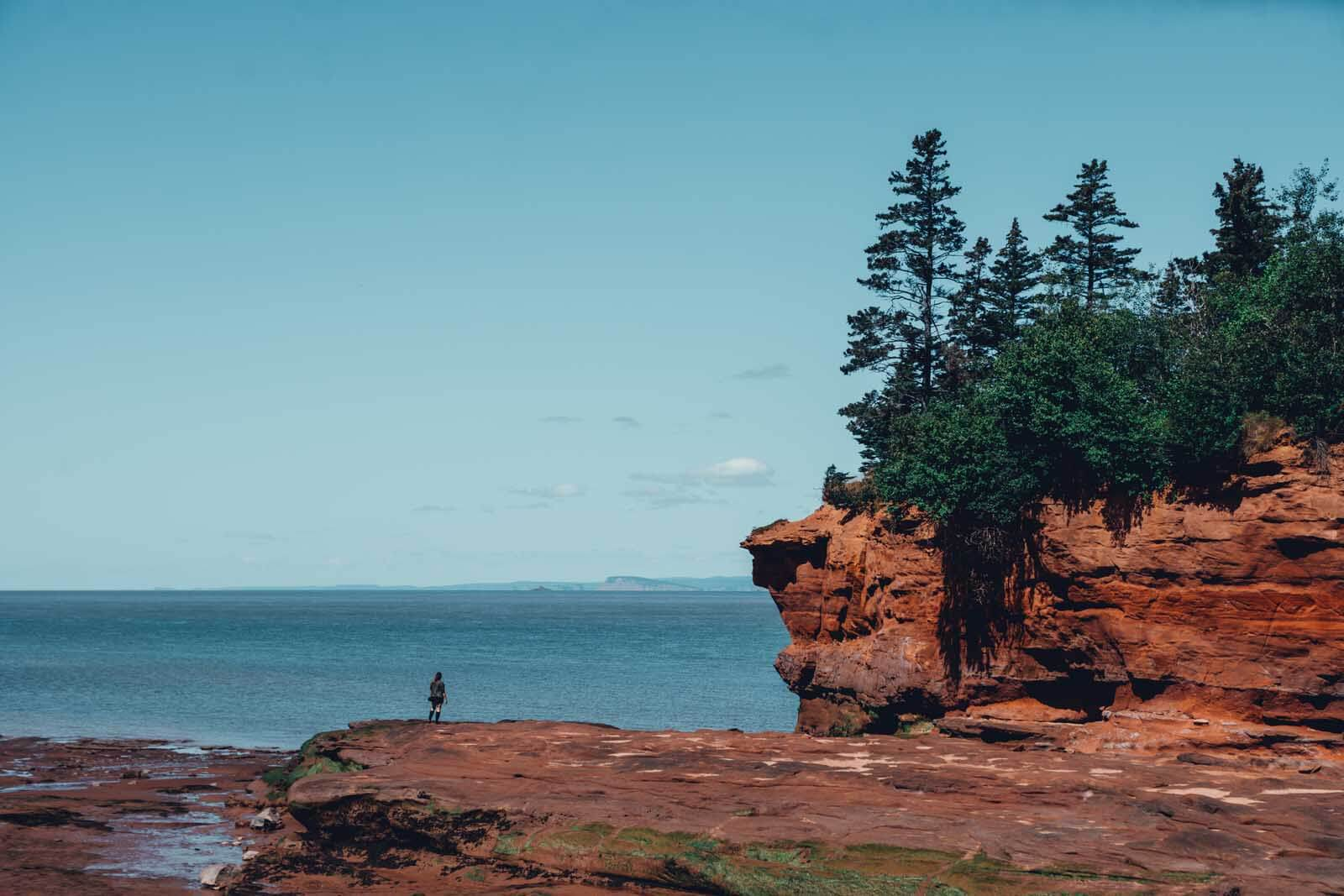 Megan standing on the rocks at Bay of Fundy at low tide