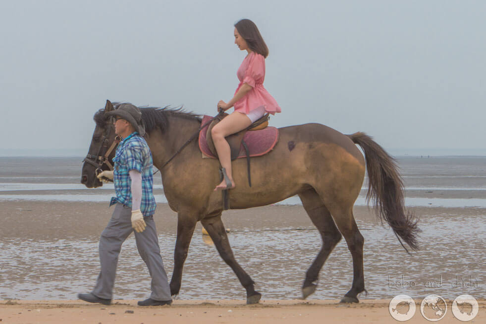 Muuido Island Horse rides