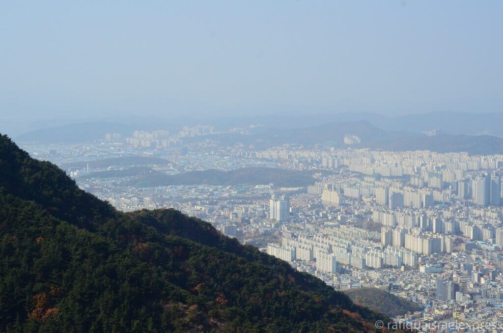 Daegu | best things to do in korea