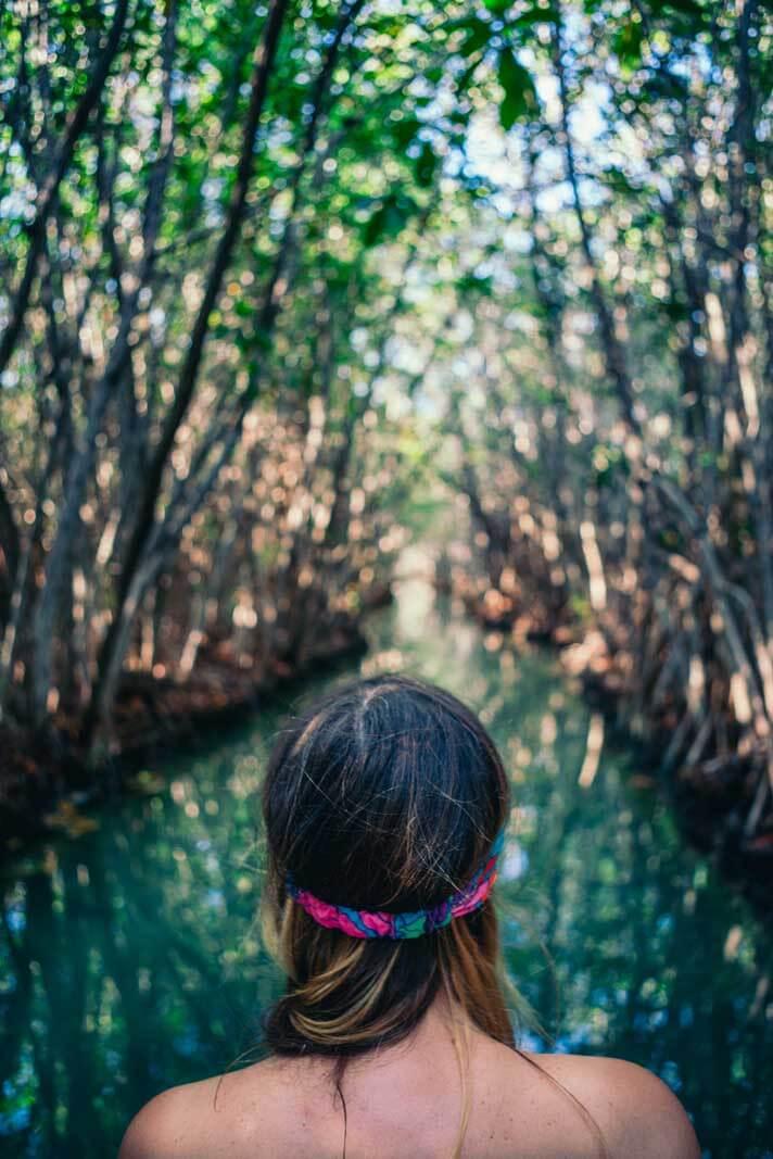San Crisanto Mangroves tour
