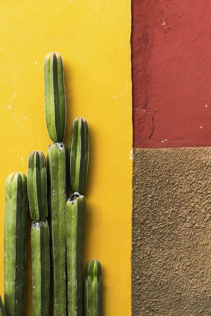Beautiful details in San Miguel De Allende