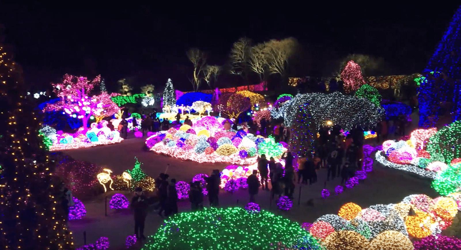 Garden of Morning Calm Lighting Festival