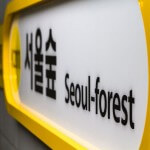 5 Reasons Why Seoul Forest is a Great Place for Dates in Seoul