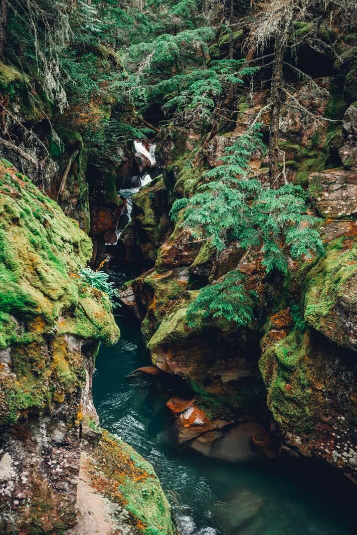 The crazy vivid colors of Avalanche Creek in Glacier National Park in Montana