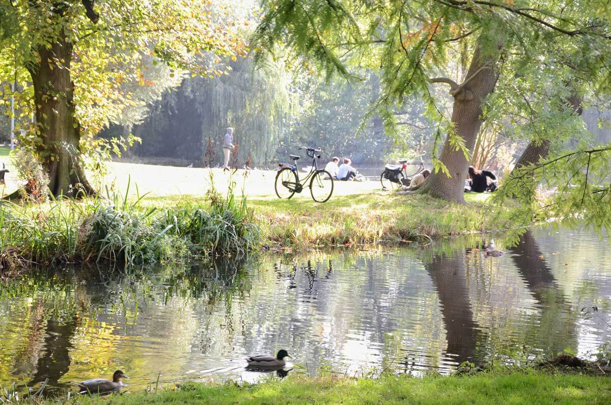 at-vondelpark-in-Amsterdam-NPUAY34