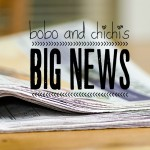 Bobo and Chichi's Big News