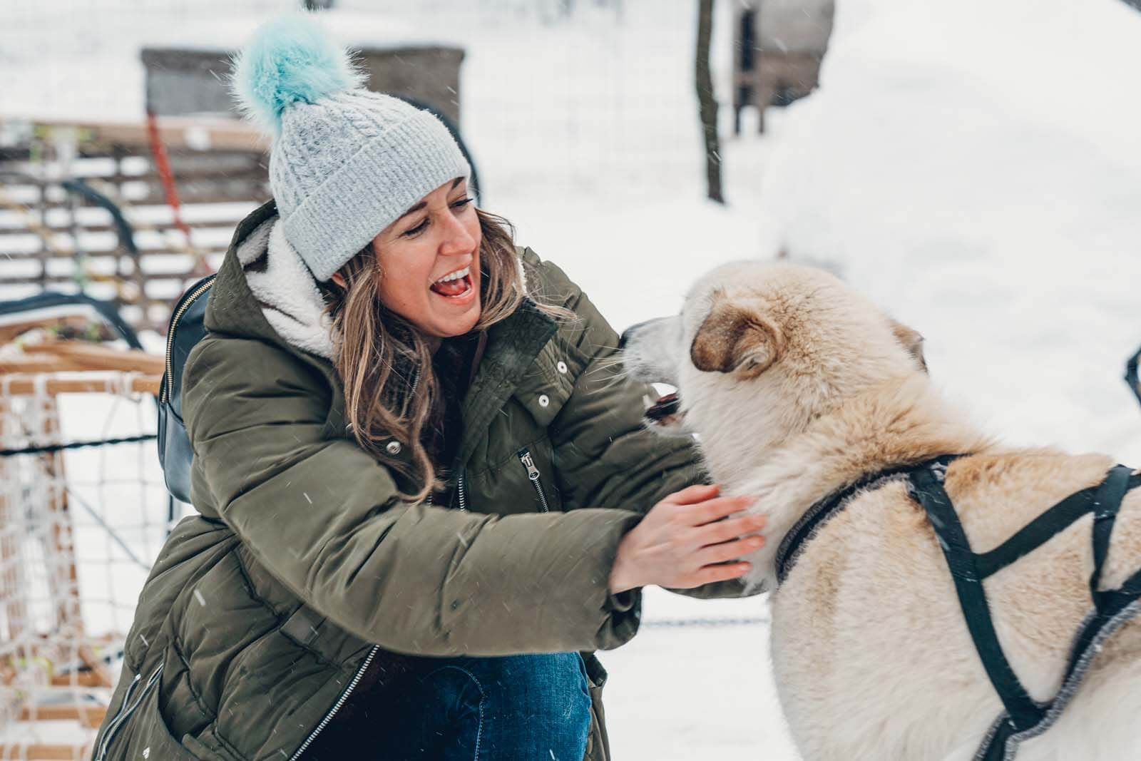 bonding with the dog sled dogs in winter