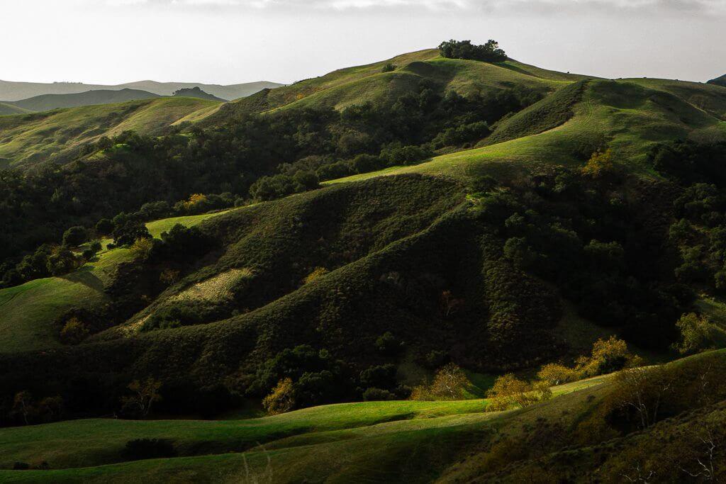SLO in California