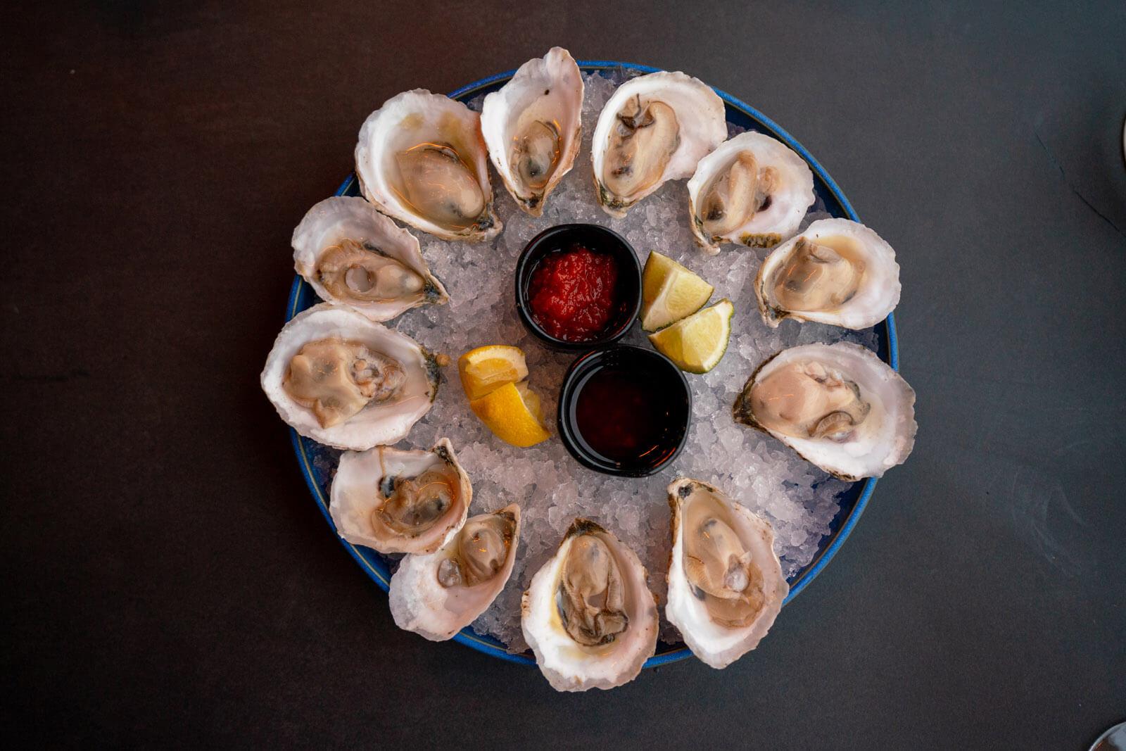 fresh oysters in portland maine