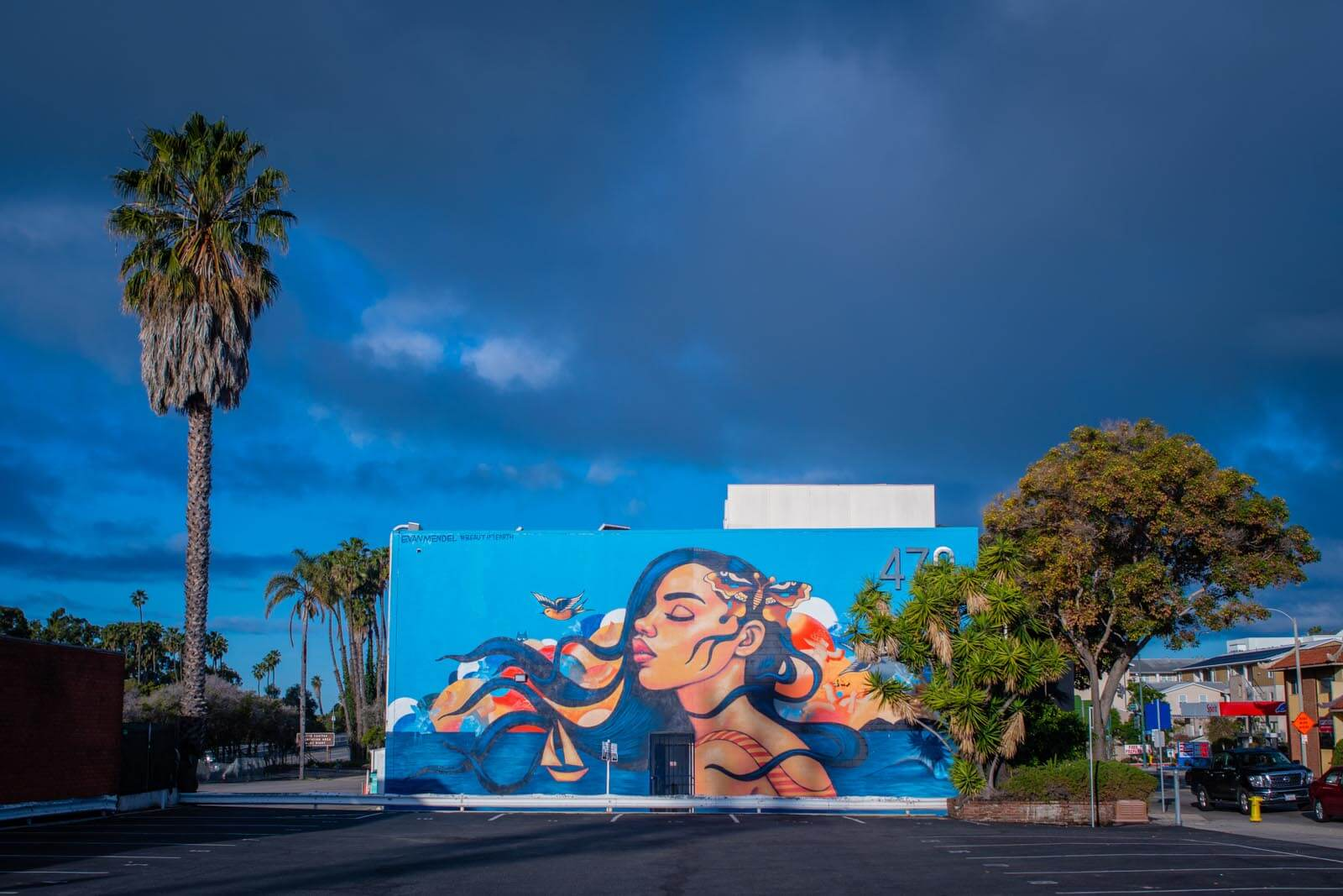 gorgeous mural in downtown Ventura