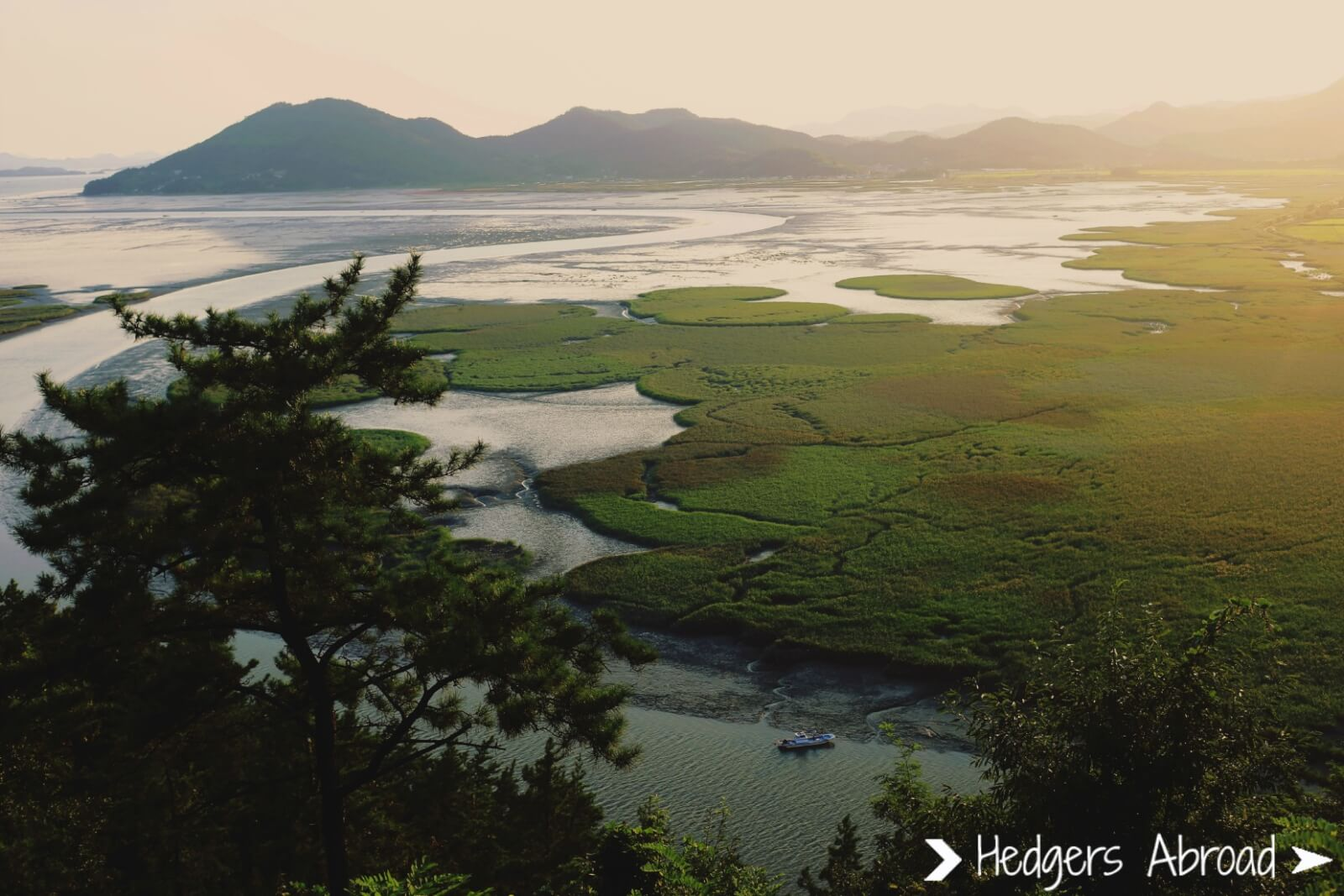 Suncheon Bay at Sunset | best things to do in korea