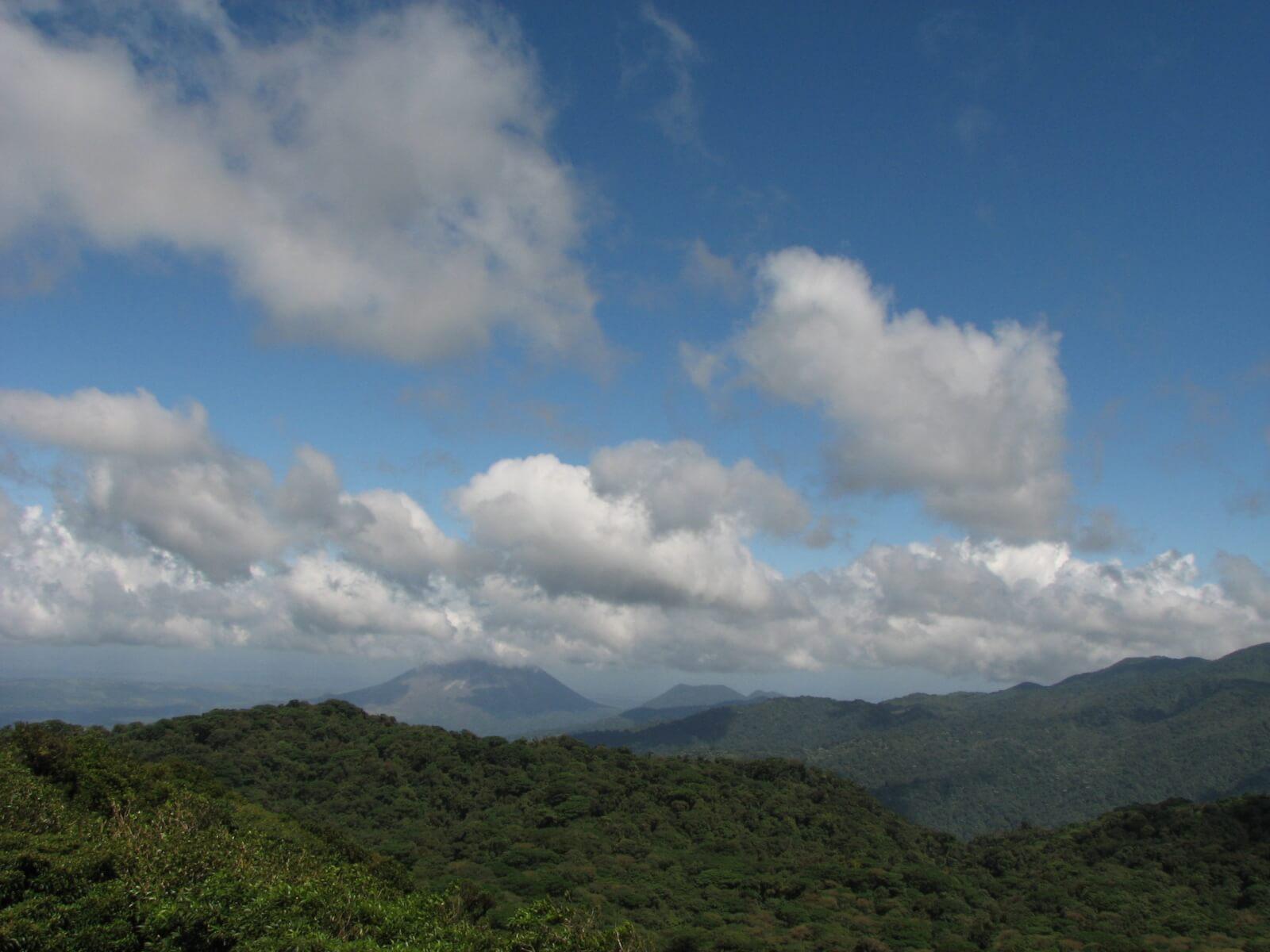Monteverde Reserve View