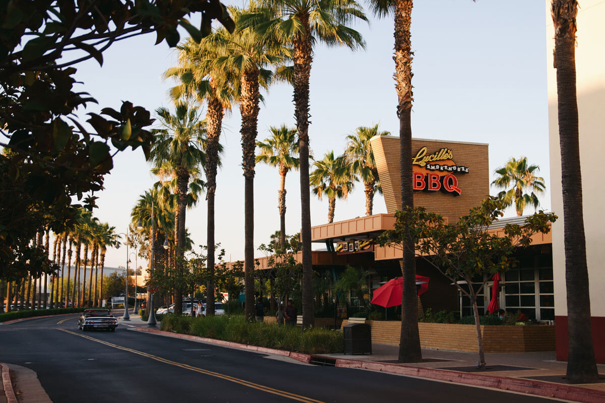 palm-trees-lining-Lucilles-BBQ-in-Temecula-California-by-Katie-Hinkle