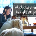 Which Cafes in Seoul are Right for You?