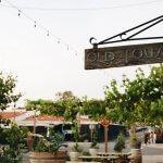 Amazing Things to do in Temecula California (Getaway Guide)